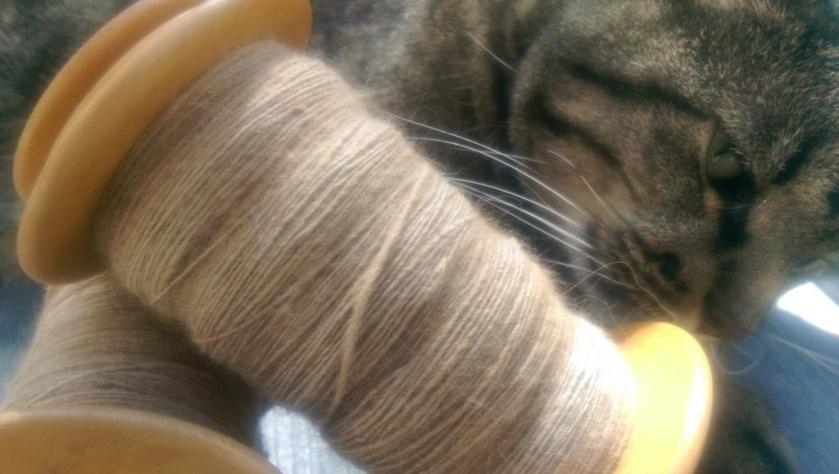 I have to admit that this yarn smells pretty interesting.
