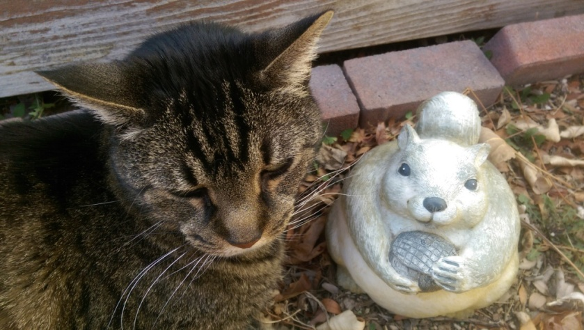 Cat and garden ornament