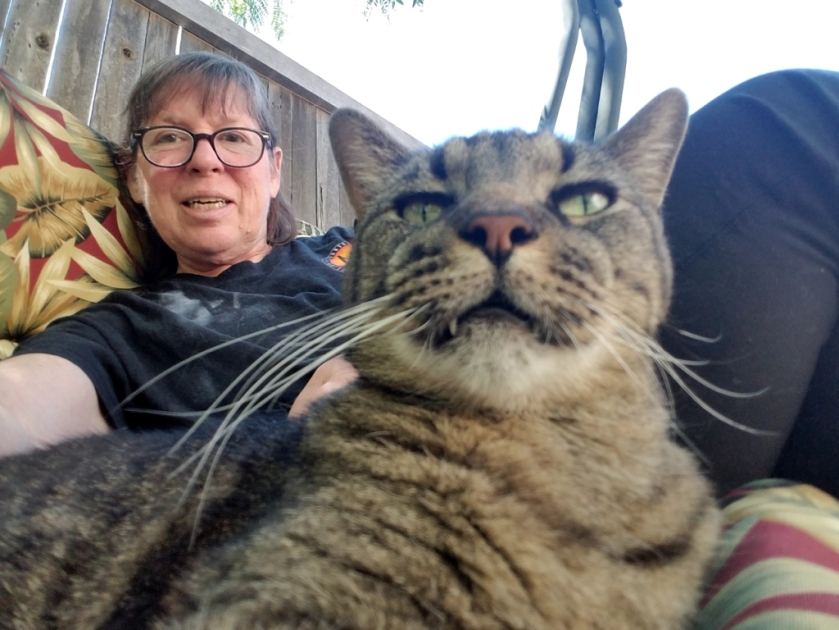 Cat and owner in lawn chair