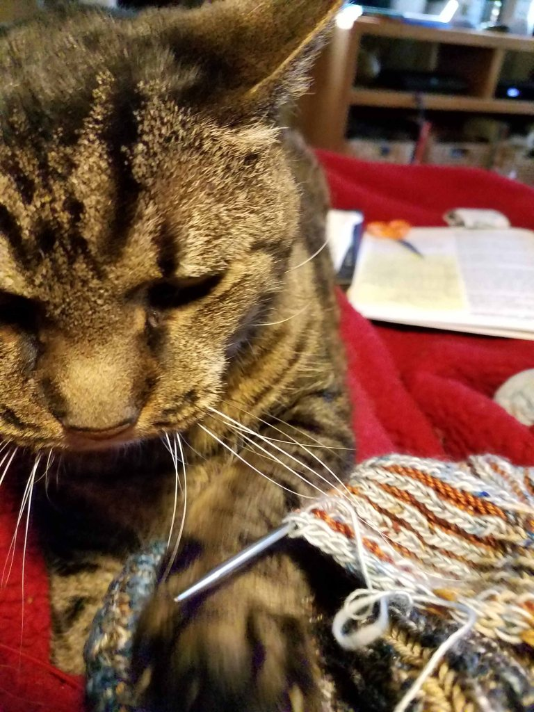 Claws in the knitting.