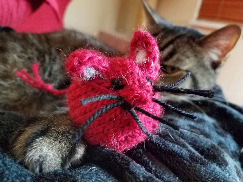 Cat and toy mouse.