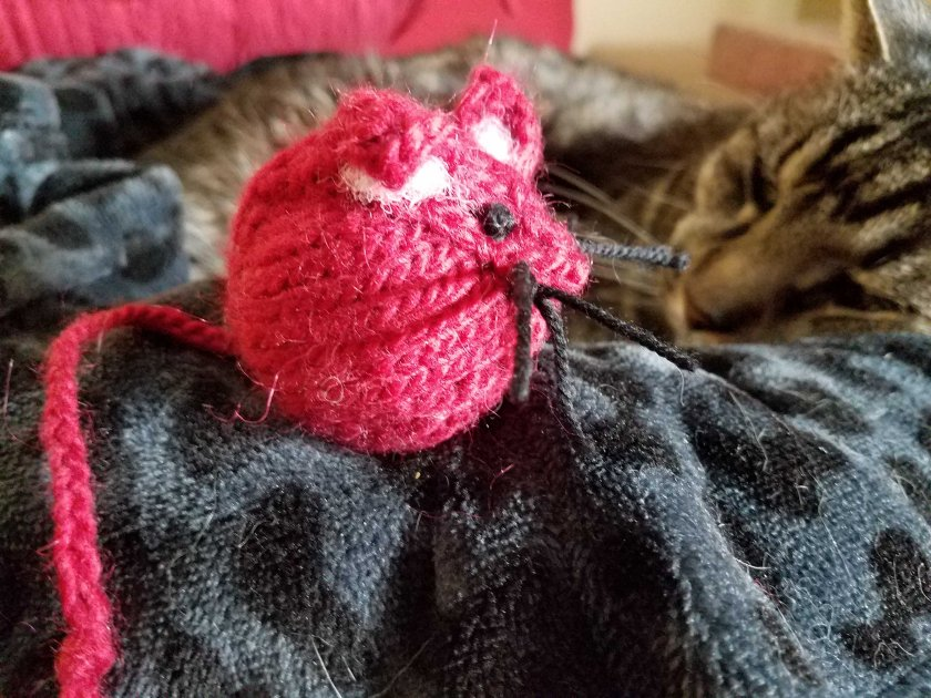Sleeping cat with toy mouse.