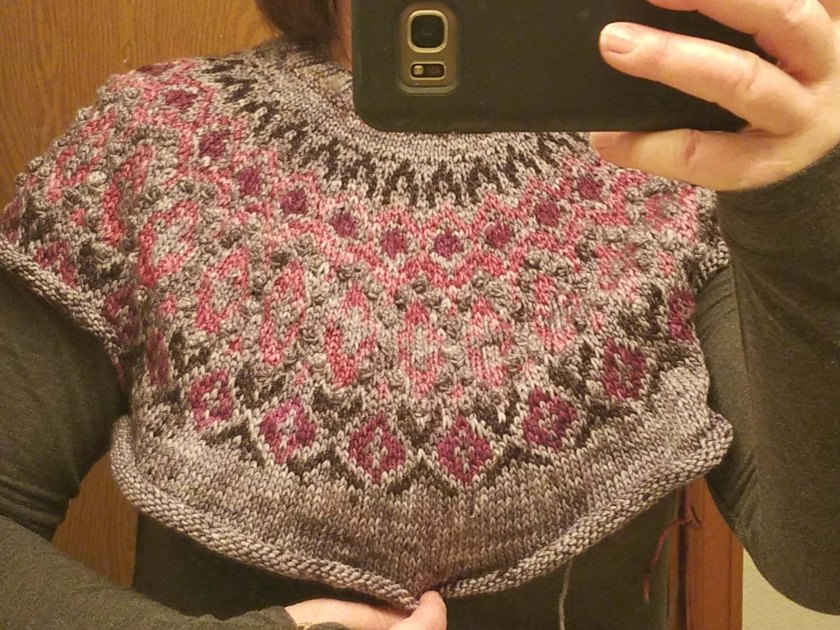 Author wearing sweater in progress.