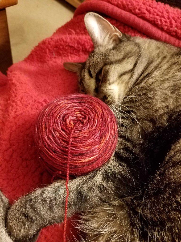 Cat sleeping with ball of yarn.
